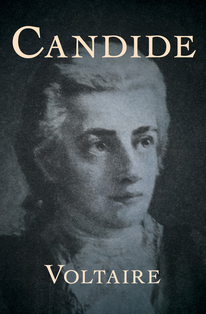 "the principles of satire and humor in candide by voltaire In candide , voltaire affirms locke's epistemology in chapter two, by building off this eighteenth-century emphasis on the human body, we can see that john locke, specifically, used the human body and a ""reverse-mode"" of explanation."