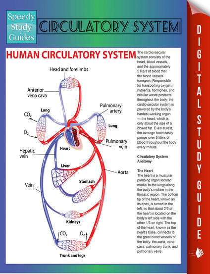heart study guide on cardiovascular system Cardiovascular system means the system of heart and blood vessels of human body the term cardiovascular is a combination of two word cardiovascular system is made up of three major components heart, blood vessels and blood heart:heart is a hollow muscular organ made of.